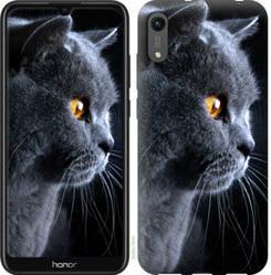 "Чехол на Honor 8A Красивый кот ""3038c-1635-328"""