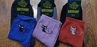 """Жіночі стрейчеві шкарпетки""""Житомир LUXURI"""" Котики 23-25(36-41), фото 1"""