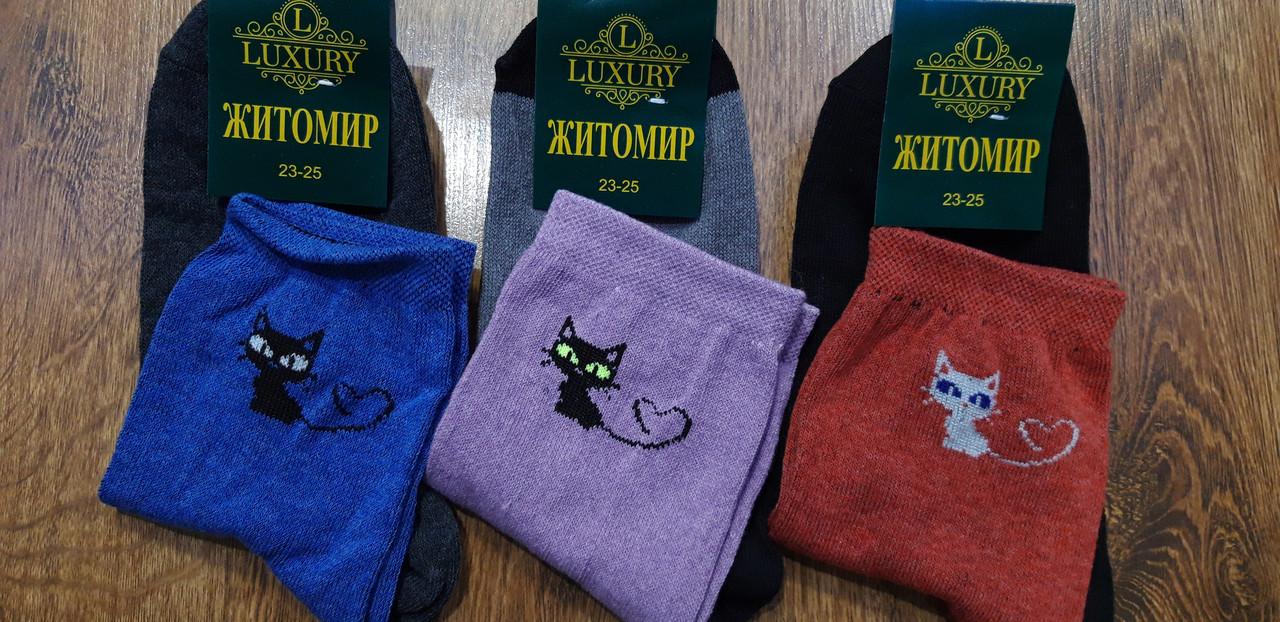 """Жіночі стрейчеві шкарпетки""""Житомир LUXURI"""" Котики 23-25(36-41)"""