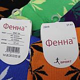 "Женские носки ""Фенна"", 37-41 р-р .  Женские носочки, носки для женщин, фото 2"