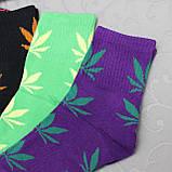 "Женские носки ""Фенна"", 37-41 р-р .  Женские носочки, носки для женщин, фото 4"