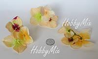 Веточки 3 шт. гортензии персиковая, фото 1