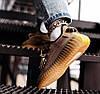 """Женские кроссовки adidas Yeezy Boost 350 V2 """"Earth"""" (Адидас Изи Буст 350) бежевые, фото 4"""