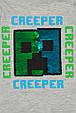 Реглан на мальчика с двусторонними пайетками Minecraft C&A Германия Размер 110, 116, фото 3