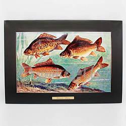 Панно настенное «Рыболовство», 38х28/20х30 см (263-6002B)