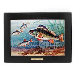 Панно настенное «Рыболовство.Окунь», 38х28/20х30 см (263-6007B)