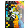 Блокнот А6 Микс 60л                                                                        Артикул: ВА6460-099, фото 3