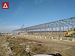 Ангар 20х72х5 склад, каркас, 1440 кв.м. новий, металоконструкція, фото 5
