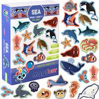 """Магнитный набор """"Морские животные"""" ML4031-07 EN"""
