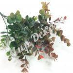 Куст эвкалипта, с красными листиками