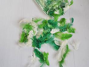 Пір'я двоколірне біло-зелене упаковка