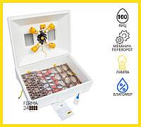 Инкубатор механический Теплуша ИБ 100 ЛВ Ламповый с влагомером, фото 1