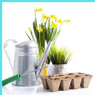 Все для выращивания и ухода за растениями