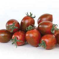 Семена томата индетерминантного KS 277 F1(Kitano) 500с