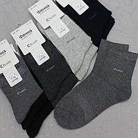 """Носки мужские классические, """"Фенна"""", 41-47 размер. Укороченные носки для мужчин, хлопок, фото 1"""