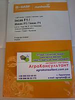 Семена томата Инкас F1 (Nunhems) 1 000 семян — средне-ранний (95-100 дней), красный, детерминантный, сливка, фото 1