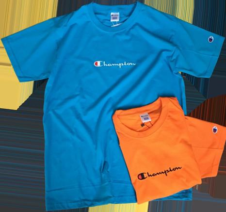 Мужская футболка Champion (ориг.бирка и качество) синяя