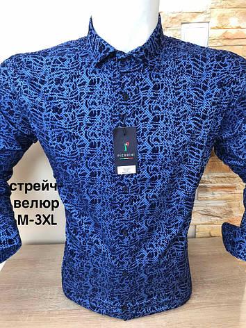Рубашка Pierrini стрейч-велюр, фото 2