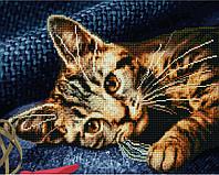 Алмазная мозаика + раскраска. Котенок, 40*50 см