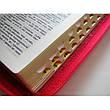 Біблія українською мовою (рожева), фото 2