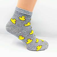 Шкарпетки жіночі сірі Качечка