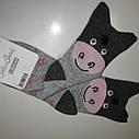 Шкарпетки дитячі, віслюка, ТМ Steven , Польща 32-34, фото 2