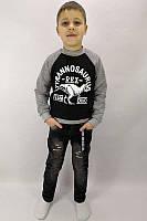Детский модный реглан Tyrannosaurus на мальчика