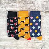 Яркие мужские носки с забавным принтом, фото 2