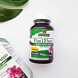 Nature's Answer, По д'Арко, 1000 мг, 90 растительных капсул, фото 2