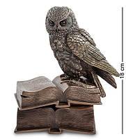 Шкатулка Veronese Сова на книгах 18 см 1901902 с книгами