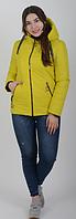 Модная фабричная демисезонная куртка на силиконе, фото 1