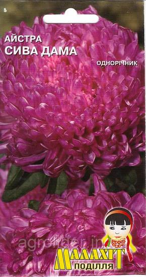 Семена цветов Астра Седая дама 0.5г (Малахiт Подiлля)