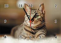 """Часы настенные из стекла  """"Зеленоглазый кот"""""""