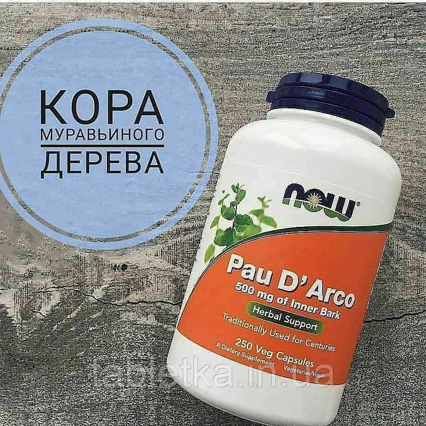 Кора Муравьиного дерева - По Д'арко для иммунитета, Now Foods, Pau D' Arco, 500 mg, 250 капсул,