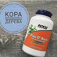 Кора Муравьиного дерева - По Д'арко для иммунитета, Now Foods, Pau D' Arco, 500 mg, 250 капсул,, фото 1