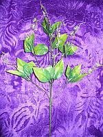 Ніжка букетний на 7 голів з листочком і пружинками