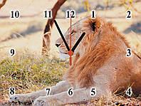 "Настенные часы ""Лев""  кварцевые, фото 1"