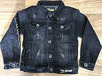 Куртка джинсовая для мальчиков оптом, S&D, 6-16 лет, арт. DT-1135, фото 1
