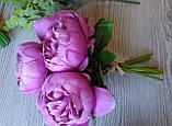 Букеты пионов лиловых, 6 шт, цена 135 грн., фото 5