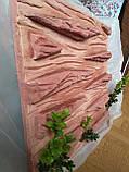Фон для террариума - доска с корой, фото 6