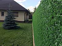 Забор зелёная рабица