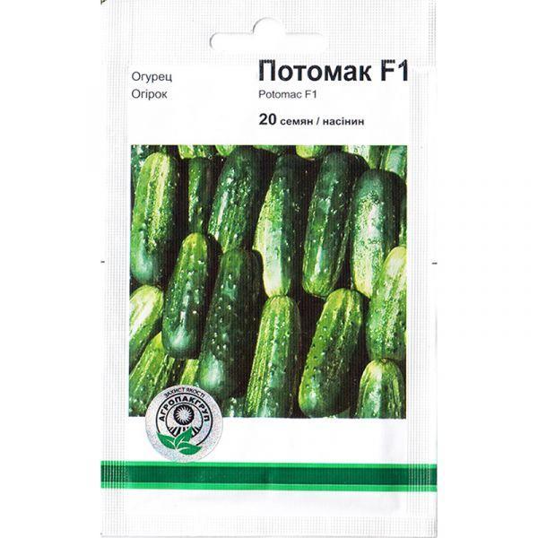 «Потомак» F1 (20 семян) от Monsanto, Голландия