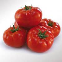 Насіння томату KS 206 F1 (Kitano) 500c