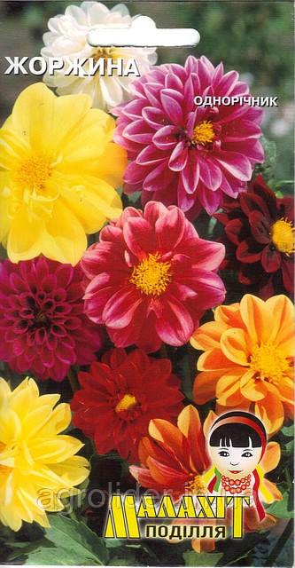 Семена цветов Георгин 0.2г (Малахiт Подiлля)