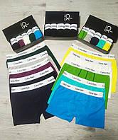 Набор мужских трусов Calvin Klein 5 шт в подарочной упаковке