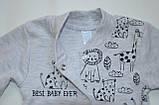 Бодик для новорождённых BD-19-26-1 *Зоомир* (цвет серый, размер 62, 74), фото 4