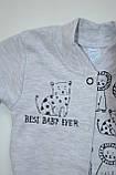 Бодик для новорождённых BD-19-26-1 *Зоомир* (цвет серый, размер 62, 74), фото 8