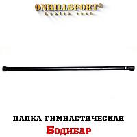 Палка гимнастическая (Бодибар) 9 кг
