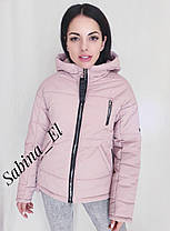 Демисезонная короткая куртка, размеры от 42 до 56, фото 3