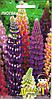 Семена цветов Люпин 0.5г (Малахiт Подiлля)